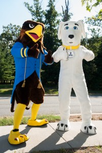 APU_AMU_university_mascots